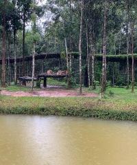 75_vinpearl-safari_2019_новый-размер